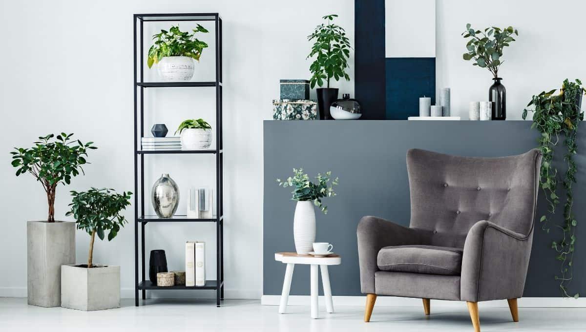 interior decorating with floor plants - EntirelyEco
