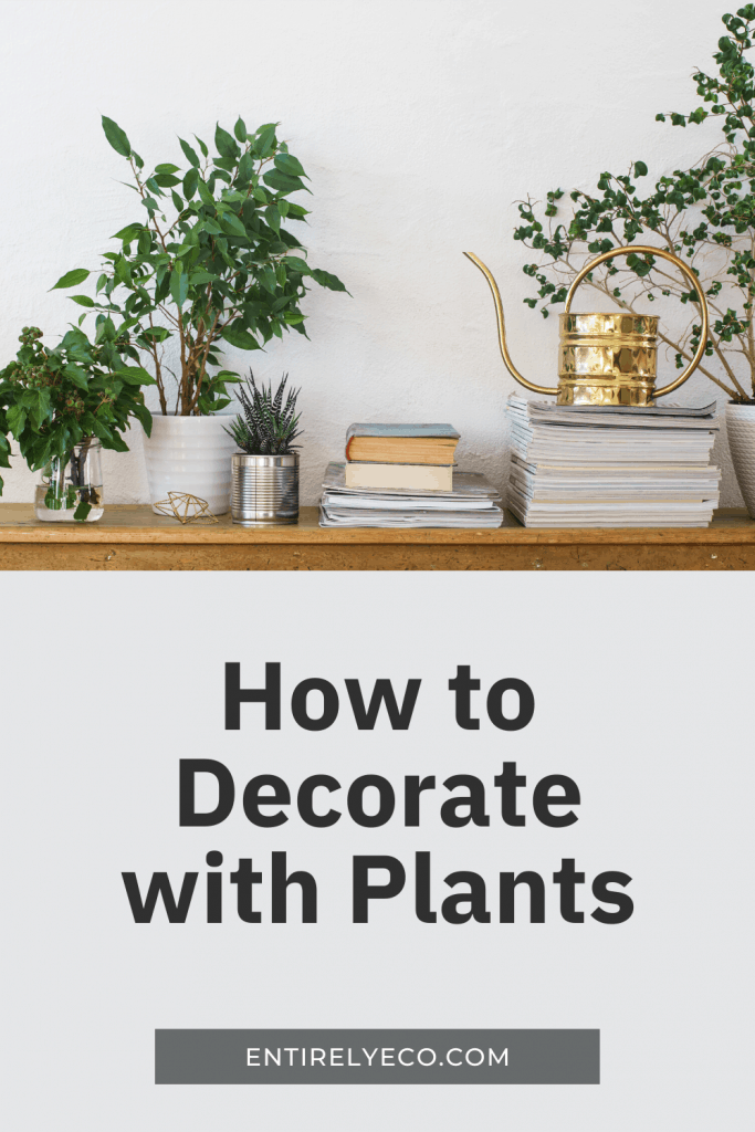 How to decorate with plants